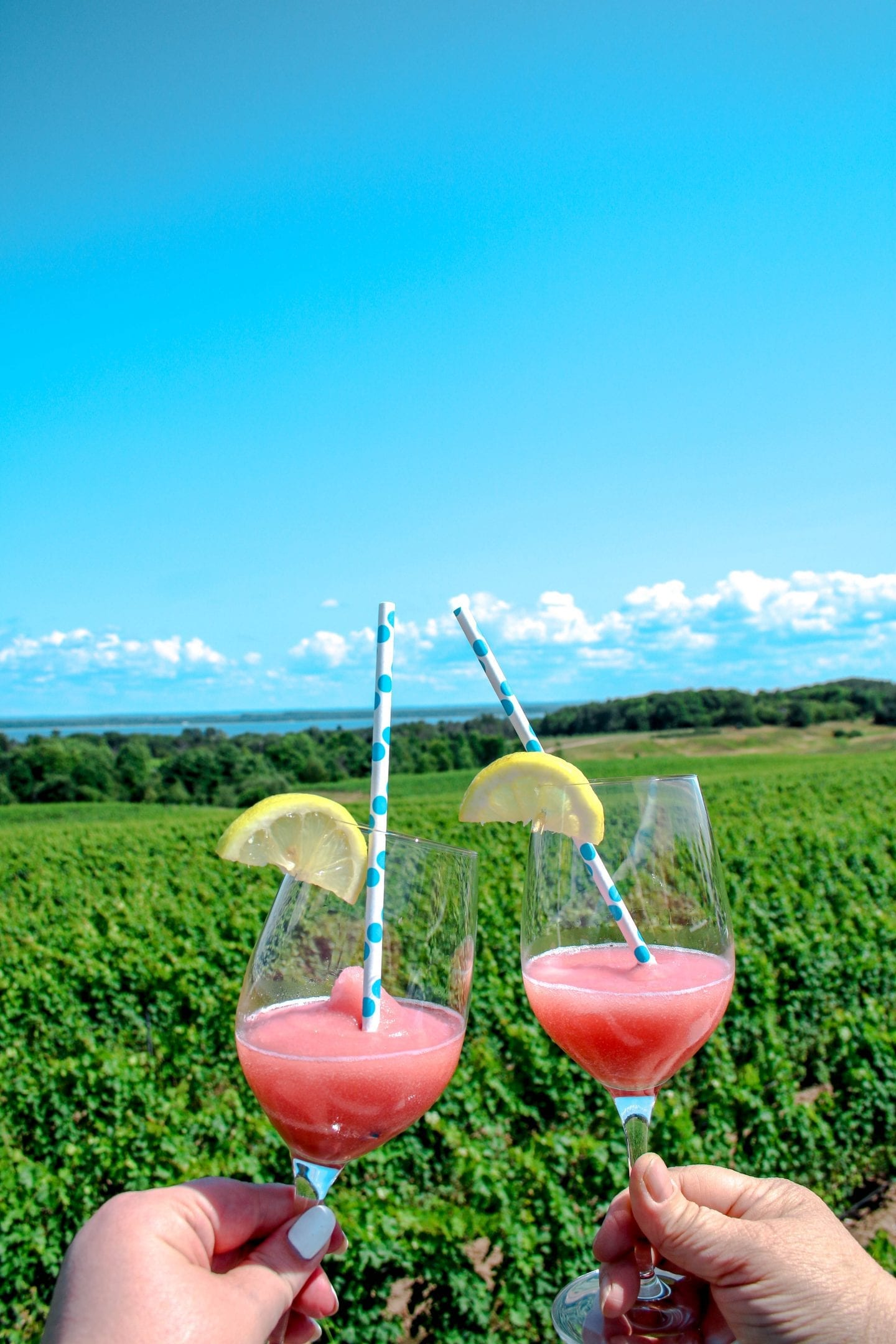 Brys Estate Vineyard: The Must Visit Winery In Traverse City