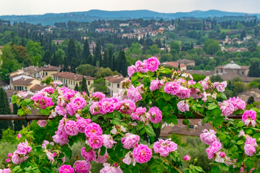 European bucket list trip - road trip through Tuscany Italy