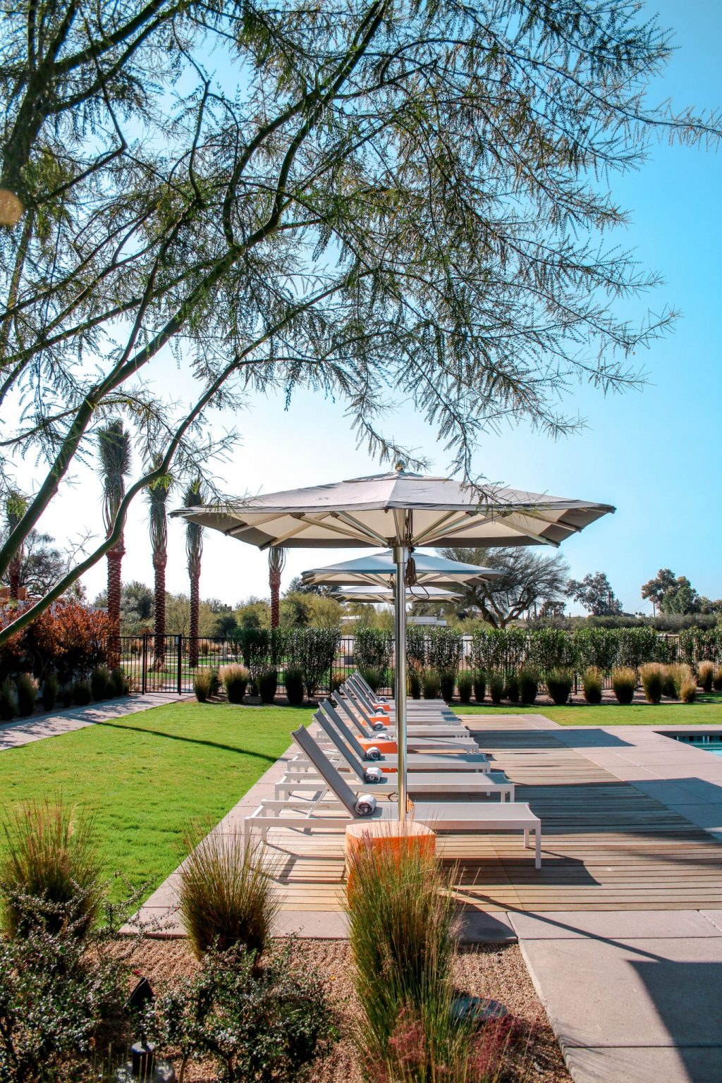 Hyatt Andaz Scottsdale: Your desert luxury stay awaits