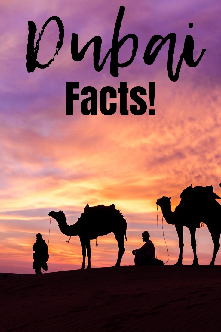 Dubai Facts : Interesting Things To Know Before You Go