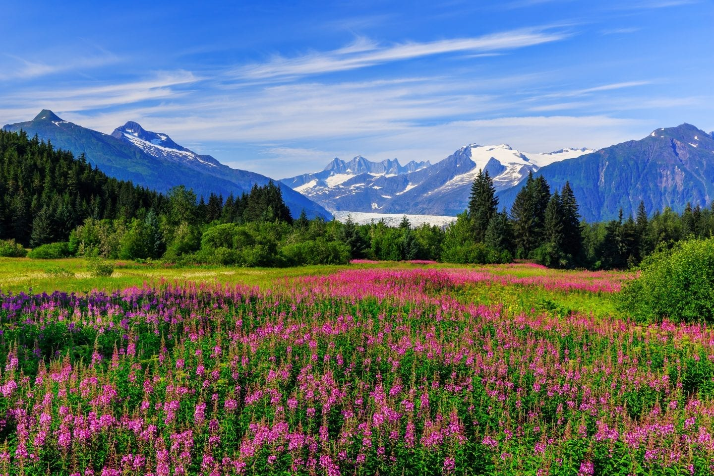 Things To Do In Juneau: The Ultimate Guide For Visiting