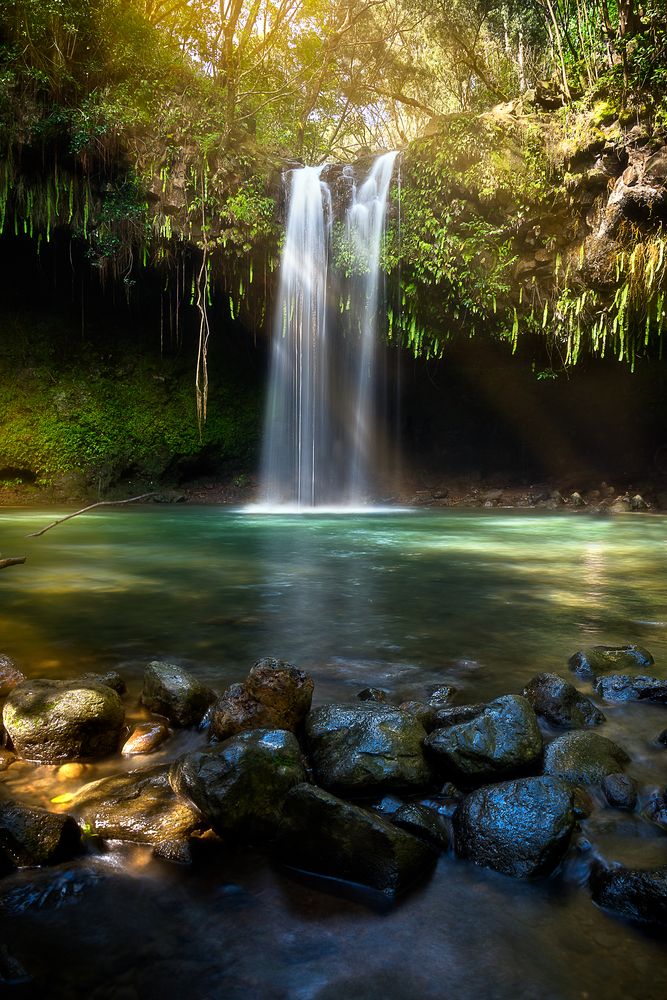 Maui Waterfalls You MUST Visit That Will Blow You Away!