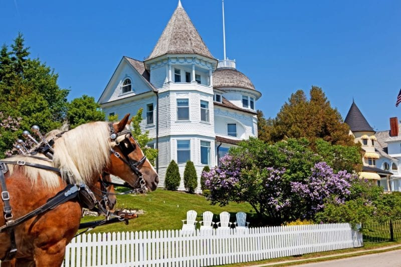Mackinac Island Lilac Festival: Everything You Need To Know!